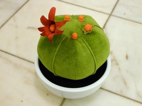 manon_kaktus
